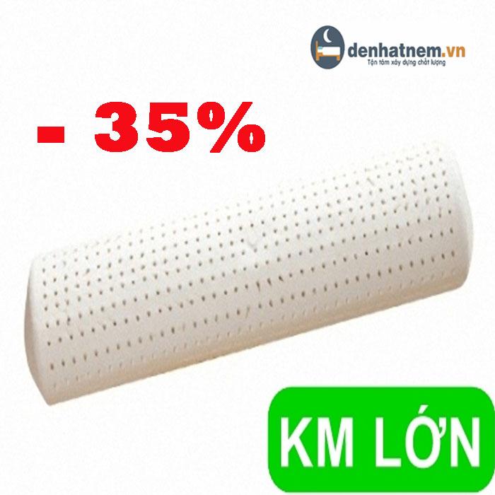 Tổng hợp các sản phẩm gối ôm cao su cho gia đình Việt