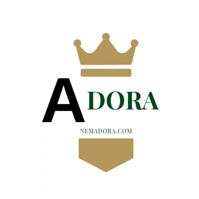 Nệm Adora – Đáp ứng nhu cầu của mọi tầng lớp người tiêu dùng